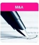 Társasági jog és M&A